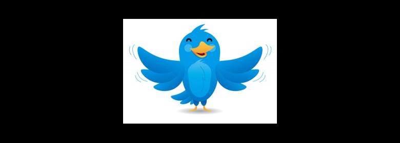 Follow Zfort Group on Twitter