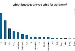 Top Programming Languages in Ukraine (January 2013 Survey)